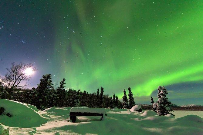 Arctic Circle and Aurora Borealis Viewing Tour from Fairbanks