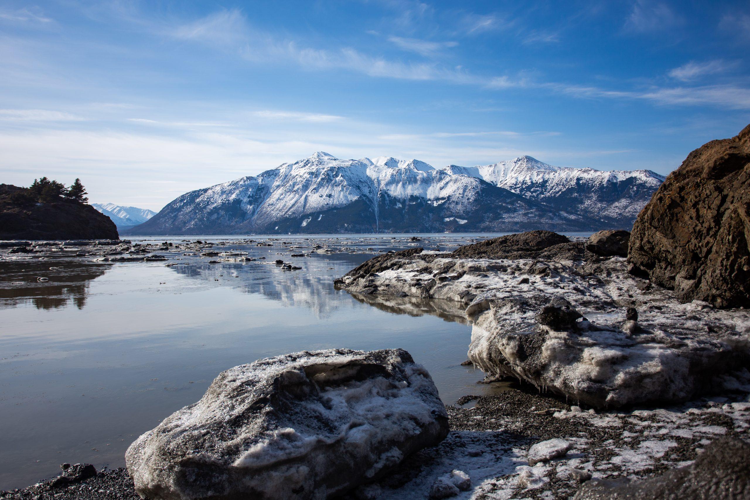 Wilderness, Wildlife & Glacier Experience from Anchorage